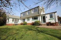 Detached property in Croyde, Devon