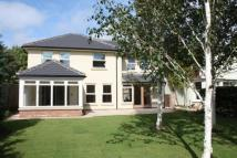 Detached home to rent in HAMILTON WAY, YORK