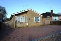 Detached Bungalow for sale in Cardigan Road...