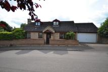 Detached Bungalow for sale in Dash Farm Close, Weldon...