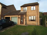 3 bed Link Detached House to rent in Little Meadow...