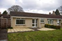 Semi-Detached Bungalow for sale in Priory Close...
