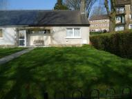 1 bedroom Terraced Bungalow for sale in Craigends Drive...