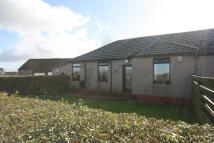 3 bedroom Semi-Detached Bungalow for sale in DARLUITH ROAD, Linwood...