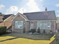 Bungalow for sale in Salisbury Road...