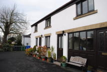 Apartment to rent in Fairfield Road, FY6
