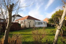 St. Johns Avenue Detached Bungalow to rent