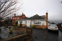 3 bed Detached Bungalow to rent in Hardhorn Road...