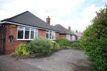Detached Bungalow to rent in Normoss Road, Blackpool...
