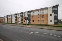 Shawfarm Gardens Flat to rent