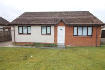 Detached Bungalow in Byers Road...