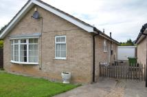 3 bed Bungalow in Undercroft, York...