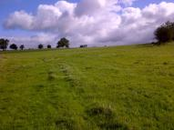 Land in Grassland at Felthouse for sale