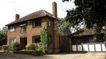 Farm House for sale in Castle Hill, East Leake...