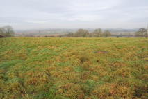 Land in Stables and 4.6 acres at to rent