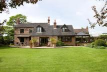 Salters Lane Equestrian Facility property for sale