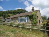 3 bed Detached Bungalow for sale in Bosley...