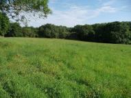 Land in 5.35 acres of grassland...
