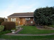 3 bedroom Detached Bungalow in Ladycross Close, Seaford...
