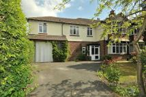 5 bedroom semi detached house to rent in Riddings Road, Hale