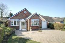 3 bed Detached Bungalow for sale in Longacres Road...