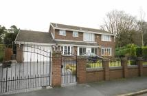 Detached property for sale in Normanby Chase...