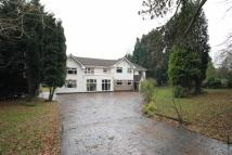 6 bedroom Detached home to rent in Brooks Drive, Hale Barns...