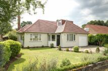 3 bedroom Detached Bungalow for sale in Marlfield Road...