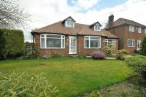 Rivershill Gardens Detached Bungalow to rent