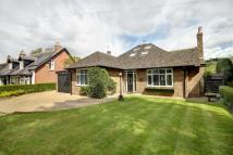 Detached Bungalow for sale in Thorley Lane, Timperley...