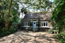 4 bed home in Margravine Gardens...