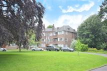 Flat to rent in Roehampton Close, Putney...