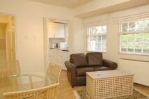 Cambalt Road Studio flat