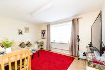Flat for sale in Morris Gardens...