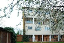 Fulwell Court Flat to rent