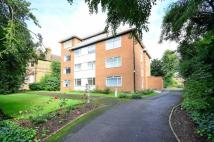 Lumley Court Flat to rent