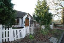 4 bedroom property to rent in West Barnes Lane...