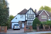 Mostyn Road house to rent