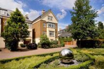 Whitcombe Mews house
