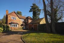 4 bed property to rent in Aldersey Road, Guildford...