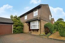 4 bedroom house for sale in Denholm Gardens, Burpham...