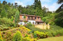 4 bedroom house in Farnham Lane, Haslemere...