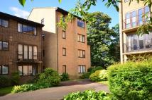 Studio apartment in The Rowans, Woking, GU22