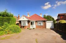 4 bedroom Bungalow to rent in Green Lane, Chertsey...