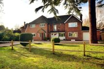 5 bed house for sale in Dartnell Park Road...
