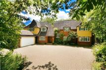 5 bedroom house in Dartnell Avenue...