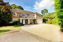4 bedroom home in Birch Grove, Pyrford...