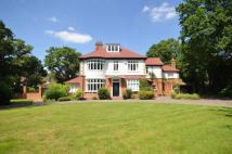 6 bed house in Dartnell Avenue...
