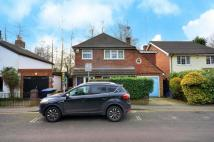 4 bedroom Detached house to rent in Horsell Moor, Woking...