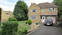 4 bed Detached home for sale in Longthorpe Green...